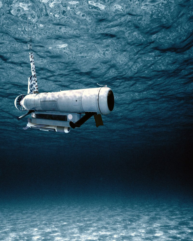 An Wld 1 Rms Remote Minehunting System