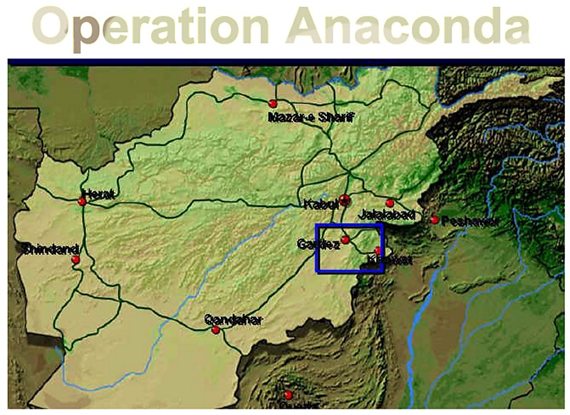 a brief look at the us military operation code named operation anaconda A brief look at the us military operation code named 'operation anaconda' a look at the controversial use of the united states military began to use a.