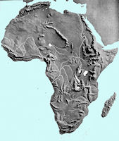 Africa Map - Elevation